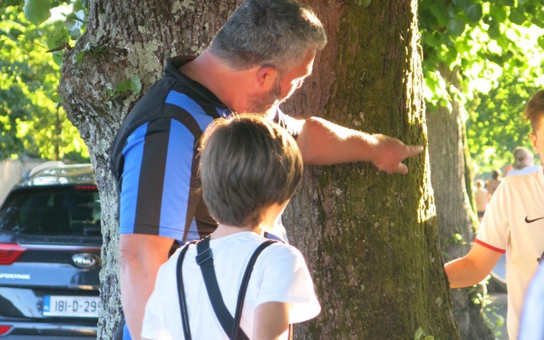 Beneficios  y consejos para disfrutar y aprender inglés en una familia anfitriona.